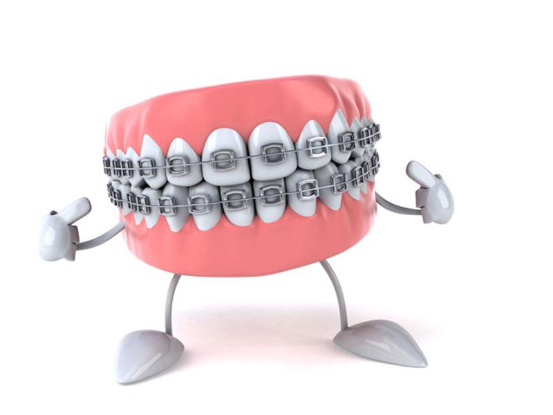 Zobni aparat na zobeh