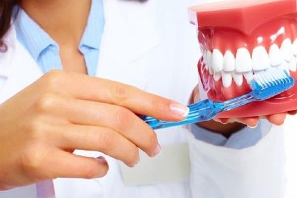 Zobozdravstvena dejavnost – Anja Šetar